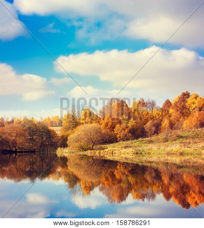 Autumn Landscape. Yellow Trees, Blue Sky and Lake. Nature Scenery in Fall. Beautiful Season Background with Reflection in Water. Toned Photo with Copy Space.
