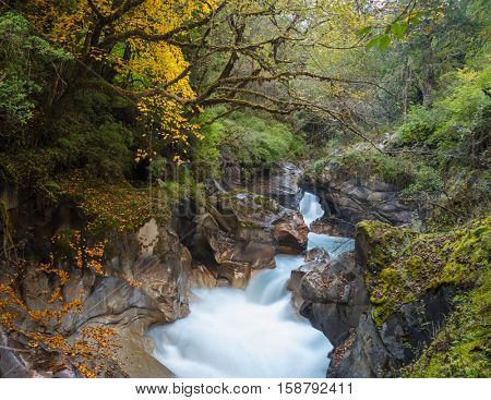 Autumn landscape with mountain river and forest. Nepal.