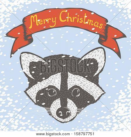 Raccoon vector illustration. Raccoons head isolated. Inscription Merry Christmas and snow