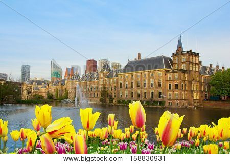 city center of Den Haag with binnenhof palace at spring, Netherlands