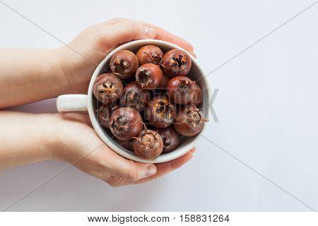 hands holding a white bowl full of medlar on white background
