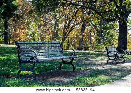 Park benches outdoors in fall with autumn colors changing on trees