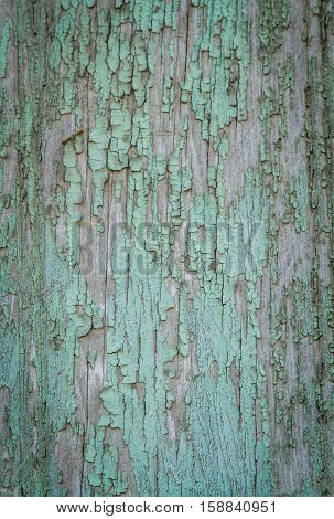 Old board with shabby bluish-green paint wooden textured background