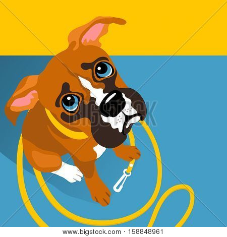 vector illustration of cute Boxer puppy with leash with space for text. For posters, cards, banners, t-shirts
