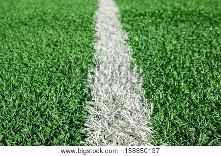 fake grass soccer field and white single line