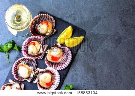 Seafood. Shellfish. Raw scallops with lemon, cilantro and white wine on black stone slate plate