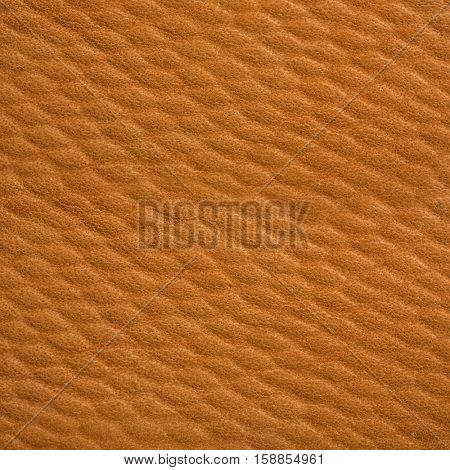 light brown skin texture, close-up