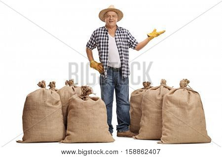 Full length portrait of a happy mature farmer standing between burlap sacks and gesturing with his hand isolated on white background