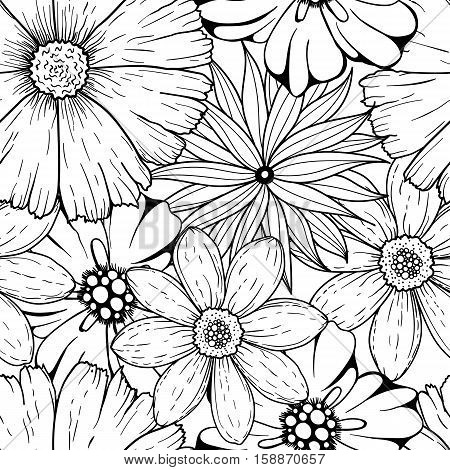 Vector seamless pattern of hand drawn colorless black white flowers. illustration isolated on white. Magic beautiful camomiles. Hand sketched doodle for coloring books, your design, web, package