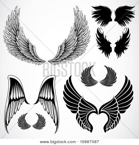 Vector Wing Set
