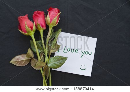 i love you message card with red rose on background black