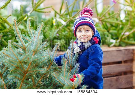 Funny little smiling kid boy holding christmas tree. Happy child in winter fashion clothes choosing and buying xmas tree in outdoor shop. Family, tradition, celebration