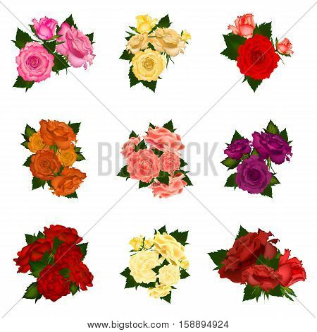 Collection of vector high detailed realistic rose flowers on white background. Vector illustration.