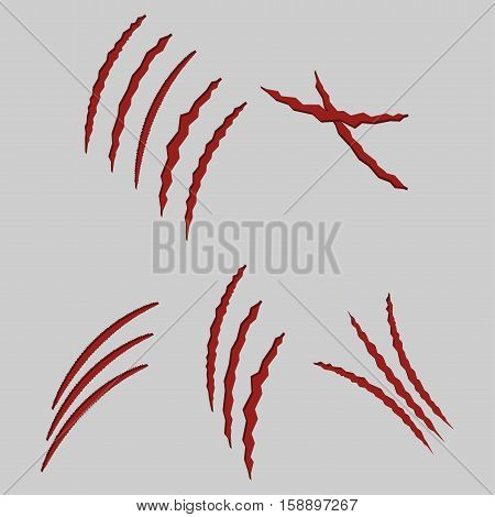 animal claws illustrated cat scratches on grey background set - vector