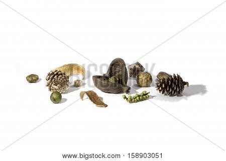 A typical Christmas card image consisting of an arrangement of a variety of dried seasonal forest items. Includes nuts berries and sprayed golden pine cones. Isolated against a white background with shadows and copy space.