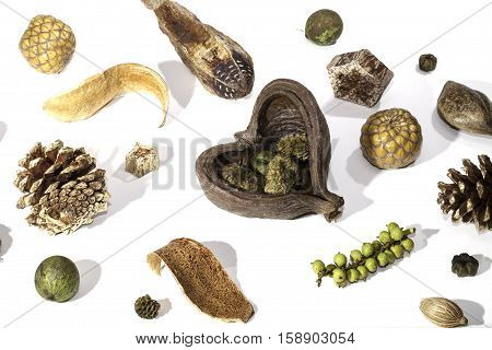 A selection of traditional Christmas potpourri items spread out and photographed against a white background. Decorative seasonal items used as a table centrepiece.