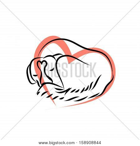 The dog is curled up. The outline of the animal on a white background. Logo vetinary clinic the dog is sleeping. Vector illustration