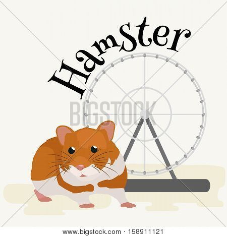 Fluffy cute hamster, small domestic animal, isolated rodent pet on white vector illustration pictograms hamster isolated on a white background