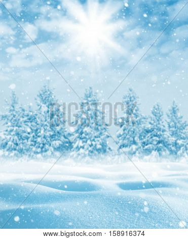 Winter beautiful landscape with snow-covered trees and the sky with clouds