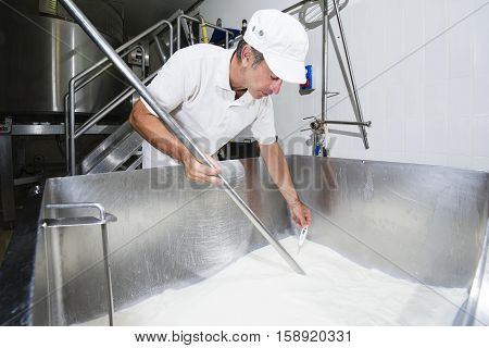 Cheesemaker Measure Temperature