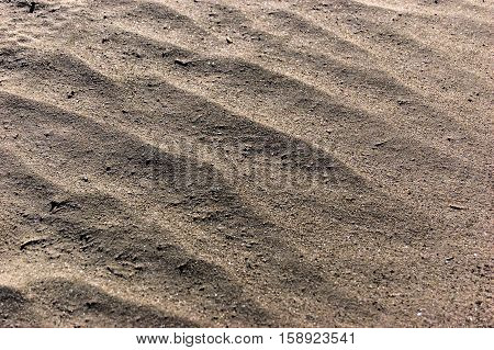 Sand background. Sandy beach texture Macro shot. A lot of Copy space.