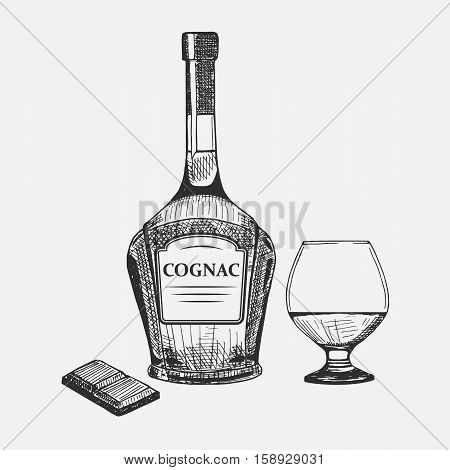 Hand drawn set of cognac elements. Vector illustration. Cognac composition used for advertising beverage in restaurant or bar menu, for alcohol markets and logo design.