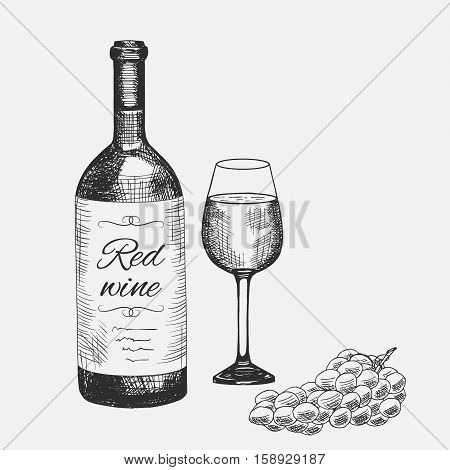Hand drawn set of red wine elements. Vector illustration. Wine composition used for advertising wine, beverage in restaurant or bar menu, for logo design.