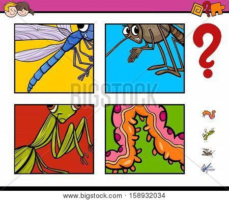 Activity Game With Insects