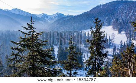 Winter scene in Poland mountains, Zakopane