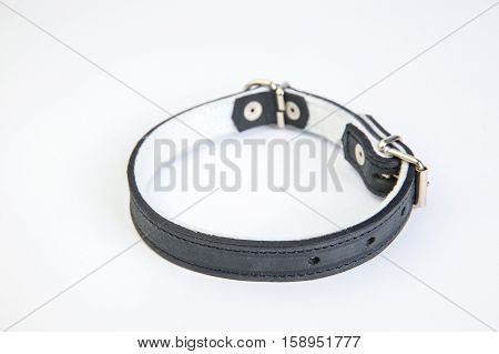 Leather black dog collar on a white background