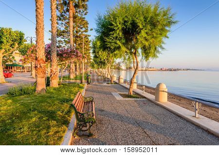 A picturesque promenade with palm trees in Kos town, Kos island, Dodecanese, Greece.