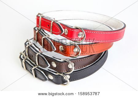 Leather black red orange brown dog collars on a white background