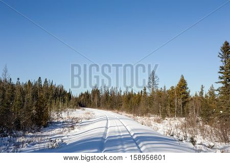 Snow covered railroad tracks leading to a pine forest and copy space in the clear blue winter sky.
