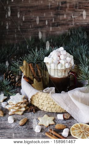 Hot Chocolate With Cream, Marshmelou And Ginger Bread