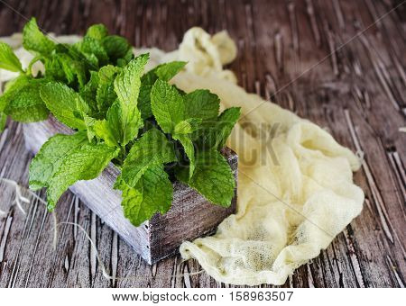 Fresh Lemon Balm Or Mint In A Small Wooden Box