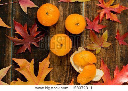 Three mandarins with autumn leaves, season�´s fruit
