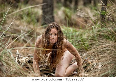 Wild Female In The Forest