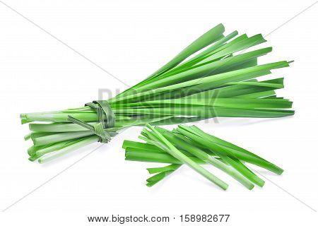 fresh garlic chives vegetableon isoalted on white background