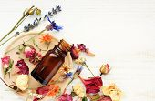 Various bright medicinal herb plant on wooden plate, essential oil extract bottle, top view. Botanical cosmetic ingredients, aromatherapy background. Herbal pharmacy. poster
