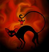 A black cat with a lamp on the tail poster