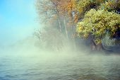 Trees on the riverside in the fog with a lot of autumn colors poster