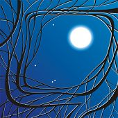 vector illustration abstract night background with twigs and moon poster