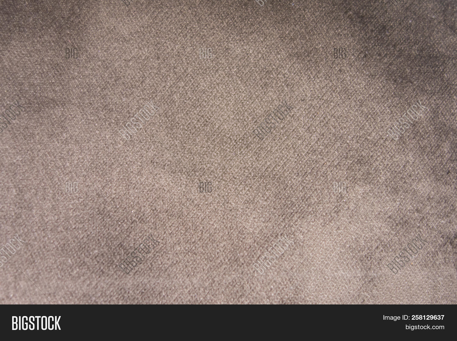 Light Gray Suede Image Photo Free Trial Bigstock
