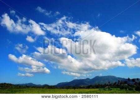 Sky & Field