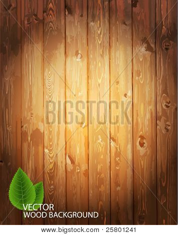 Vektor aus Holz Hintergrund.
