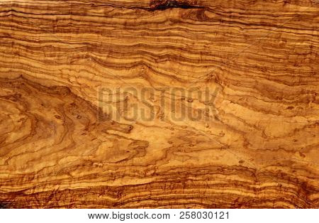 Vintage Wood Background Texture. Olive Tree. Natural Brown Barn Wood Floor / Wall Texture Background