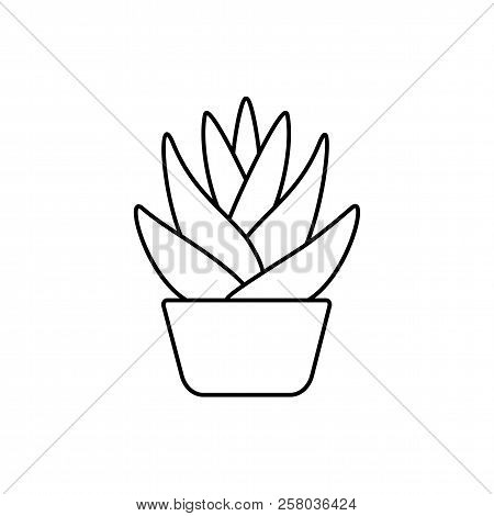 Vector illustration of agave cactus in the pot. Desert plant for terrarium and rock garden. Line icon of succulent. Isolated object on white background. poster