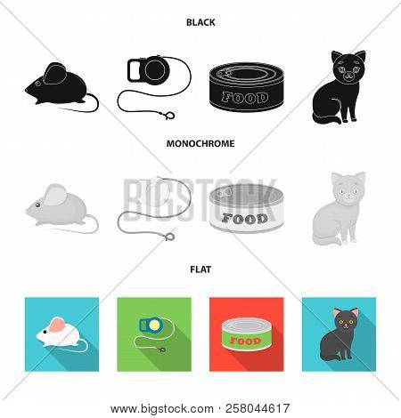Mouse, Pet Leash, Pet Food, Kitten. Cat Set Collection Icons In Black, Flat, Monochrome Style Vector