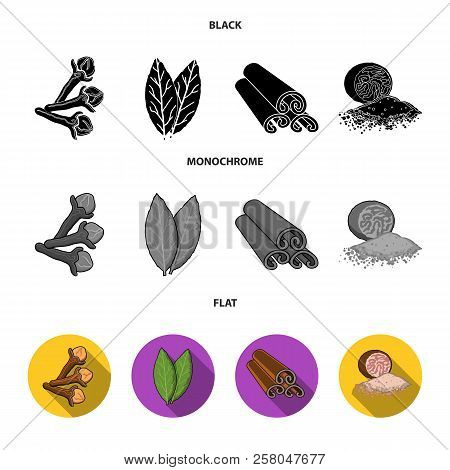 Clove, Bay Leaf, Nutmeg, Cinnamon.herbs And Spices Set Collection Icons In Black, Flat, Monochrome S