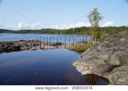 Bay Lake With Birch On A Rocky Shore. Far Shore, Overgrown With Forest. Clear Sunny Day.